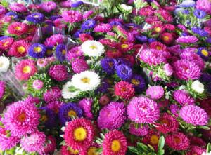 お盆・お供えの花